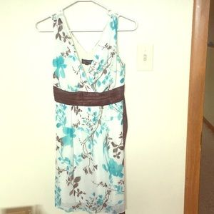 Petite Sleeveless Dress, Size 8 Excellent Conditio